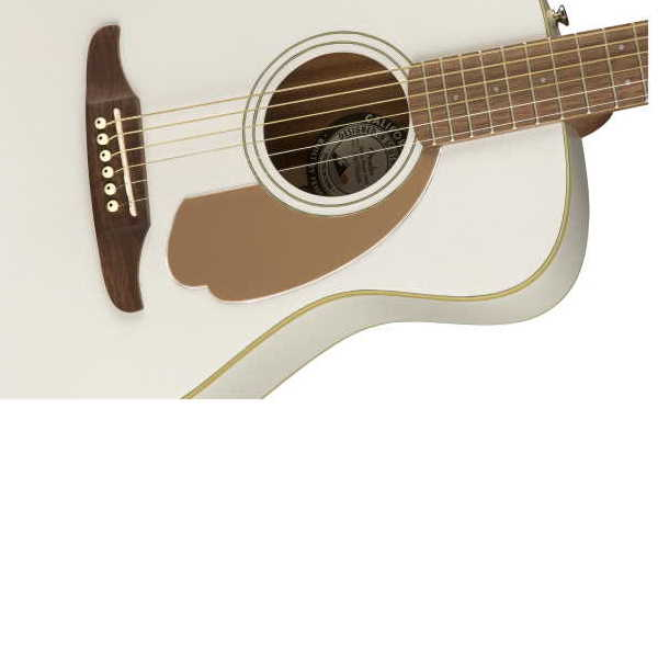 Fender Malibu Player (4)