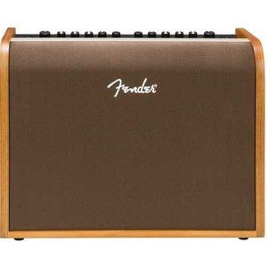Acoustic 100